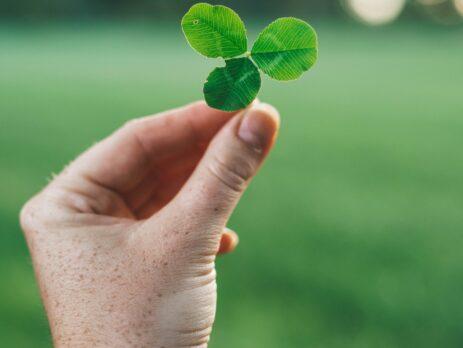 an irish shamrock in a field